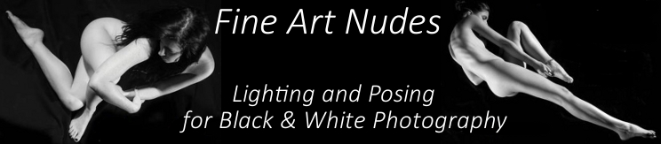 You can support this blog. Buy Fine Art Nudes: Lighting and Posing for Black & White Photography at Amazon now.  Thanks!